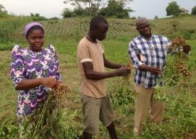 Fr. Zenon (right) helping in the fields