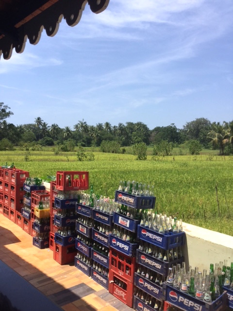 Cola and rice paddies side by side